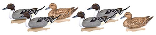 Flambeau Outdoors Storm Front 2 Classic Pintail Decoy, 6-Pack ((4) Active Drakes, (2) Relaxed Hens)