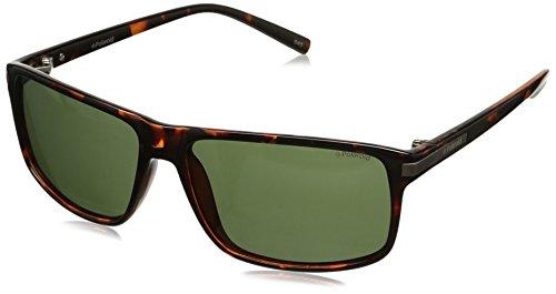 Polaroid Herren Sonnenbrille PLD3010/S-V08, Braun (Havana), 59