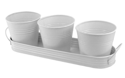 (PLAID 3 Metal Planting Pots In Tray - White)