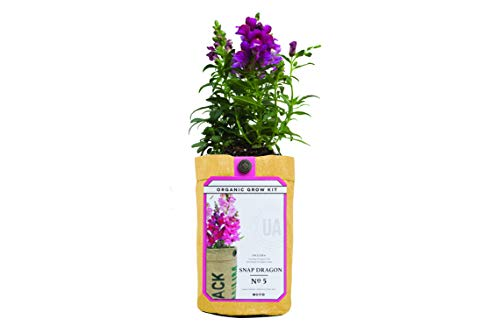 (Urban-Agriculture Organic Flower Growing Kit Includes Organic Soil and Seeds Snap)