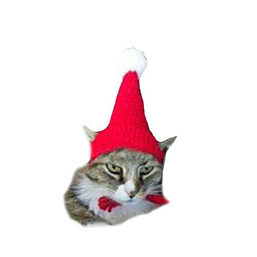 Shark strawberry Cat Costume Santa Hats pet hat Costume Santa Suit