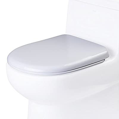 EAGO R R-351SEAT Replacement Soft Closing Toilet Seat for TB351