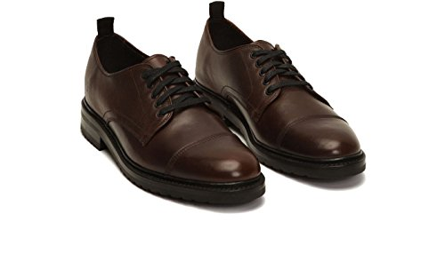 Frye Mens Officer Oxford Bruin