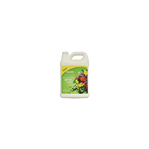 Smithers Oasis Floralife Clear Crowning Glory - 1 Gallon Lawn Garden, White (Flower Spray)