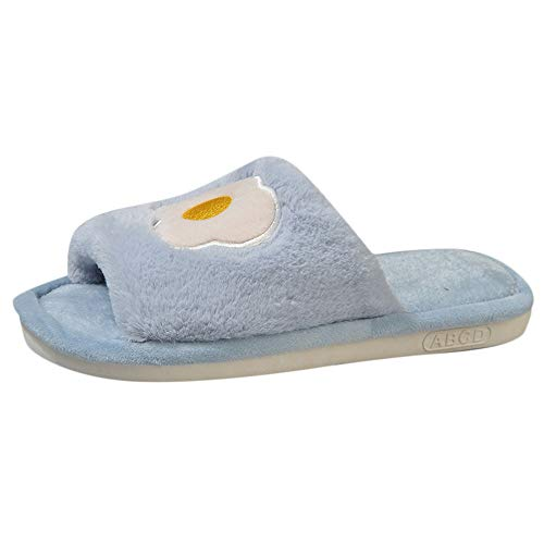 HYIRI Casual Fruit Slippers,Women's Non-Slip Shoes Wild Slippers Home Slippers ()