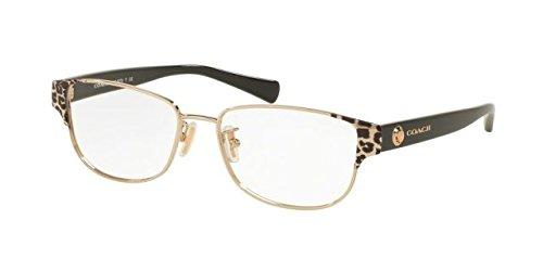 COACH Eyeglasses HC 5079 9256 Wild Beast Lt Gold/Black - Glasses Best Mens Optical