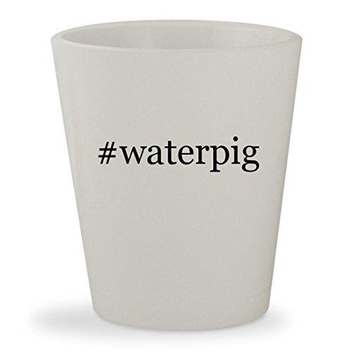 #waterpig - White Hashtag Ceramic 1.5oz Shot Glass