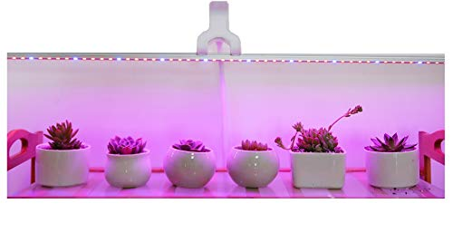 Ledy Led Grow Light 3.2ft 5050 Waterproof Flexible Soft Strip Grow Light for Plant Flower Seeds Seedlings Growing Red Blue 4:1 with DC 12V 2A Adaptor
