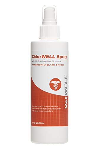 VetWELL Chlorhexidine 4% Spray for Dogs, Cats and Horses - Antibacterial Spray Treats Hot Spots, Insect Bites and Inflamed Itchy Skin - 8 oz
