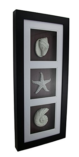 Framed Shadow Box (Wood & Glass Shadow Boxes Black)