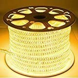 Original Water Proof LED Rope Light Colour Warm White with Adapter (10m)