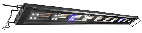 Cycle Freshwater Aquarium (Elive Track Light LED Aquarium Fish Tank Hood, Adjustable from 48-54 Inch, Includes 8 White + 2 Blue Pods, Holds Up to 31 LED Pods)