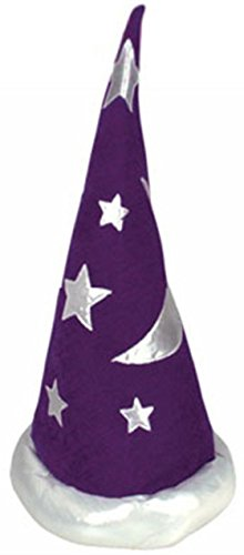 Purple Wizard (Mens Womens Child Renaissance Costume Merlin Wizard Hat)