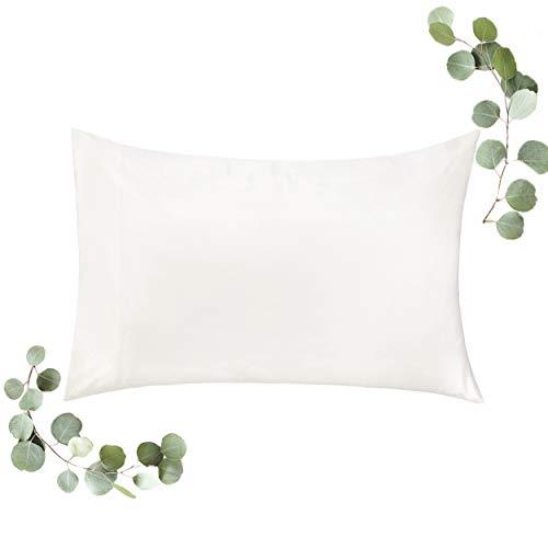 WonderHome Cooling Pillowcase for Hair Skin Deeper Sleep, Luxury Tencel + Bamboo Rayon, Silky-Soft Lightweight Standard Satin Pillow Case, Anti-Bacteria, Hypoallergenic, Natural Ivory, 20x30