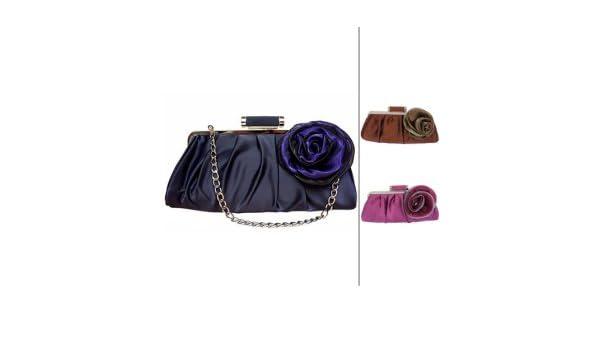 Amazon.com : gorgeous silk shell with applique evening bag handbag