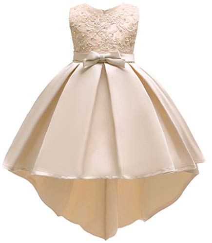 Shiny Toddler Little Girls Pleated Beaded High-Low Applique Embroidered Flower Girl Pageant Dance Party Dress,Champagne,6-7 -