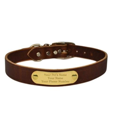 Warner Brand Cumberland Leather Dog Collar + Free Engraved Brass ID tag (23