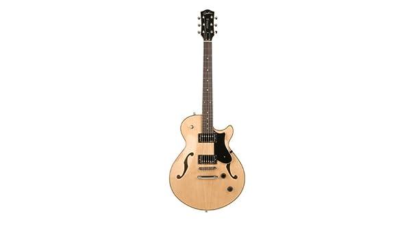 Godin guitarras 036615 diseño guitarra eléctrica: Amazon.es ...