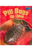 Pill Bugs Up Close (MINIBEASTS UP CLOSE) pdf epub
