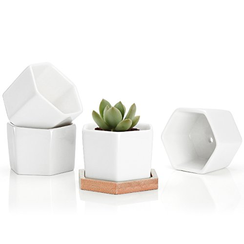 Greenaholics Succulent Plant Pots - 2.76 Inch Small Ceramic Hexagon Containers, Cactus Planters, Flower Pots with Drainage Hole, Bamboo Tray, Set of 4, White