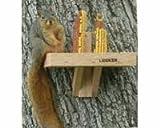 Songbird Essentials SE548 Squirrel Feeder (Set of 1)
