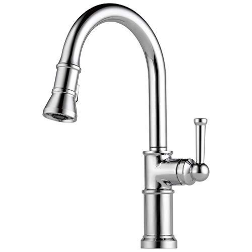Brizo 63025LF Artesso Single Handle Pull-Down Kitchen Faucet