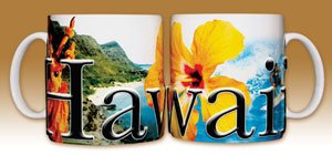 Hawaii - Coffee Mug by Flagline