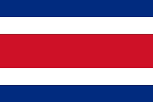 - DIPLOMAT-FLAGS Costa Rica Flag | Landscape Flag | 0.06m² | 0.65sqft | 20x30cm | 8x12in Car Flag Poles