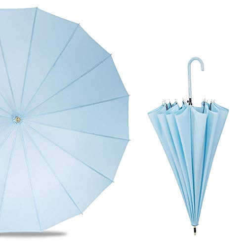 DFGdf Long Handle Umbrella Large Automatic Rain and Rain Dual Use Small Fresh Rain and Rain Umbrella (Color : Lake Blue) ()