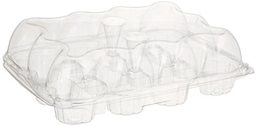 oasis cupcake containers - 6