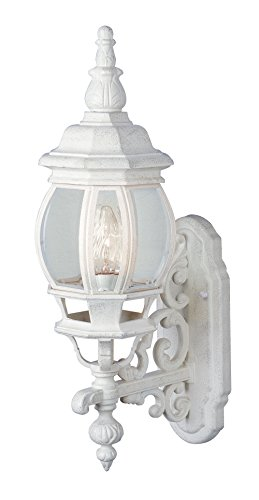 Trans Globe Lighting 4050 WH Outdoor Francisco 20.5
