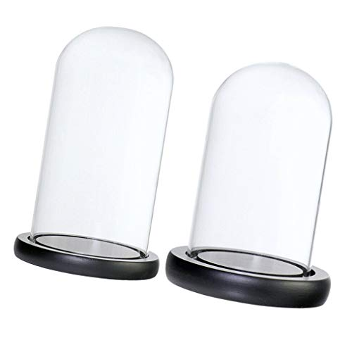10x25 7x12cm Clear Glass Dome Tabletop Display Case for Gifts Decoration]()