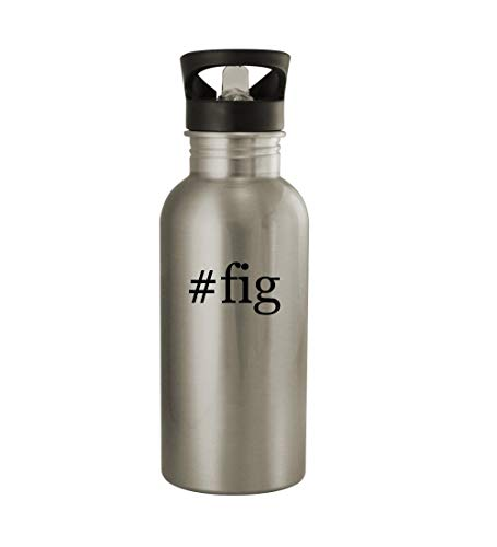 (Knick Knack Gifts #fig - 20oz Sturdy Hashtag Stainless Steel Water Bottle, Silver)