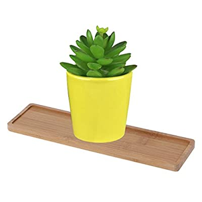 Rectangle Bamboo Wood Saucer Plant Tray - Mini Plant Flower Pot Stand,Succulent Pot Tray Simple Elegant Design Home Decor: Arts, Crafts & Sewing