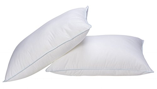 Set of 2 Standard Sized Pillows Bed Pillows Positioners