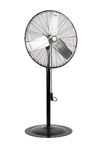 TPI Corporation CACU30-PO Oscillating Commercial Pedestal Fan, 30