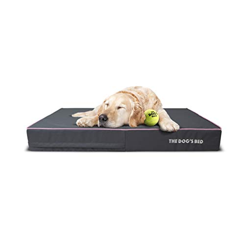 The Dog's Bed Orthopedic Dog Bed XL Grey/Pink 46x28, Premium Memory Foam, Pain Relief for Arthritis, Hip & Elbow Dysplasia, Post Surgery, Lameness, Supportive, Calming, Waterproof Washable Cover