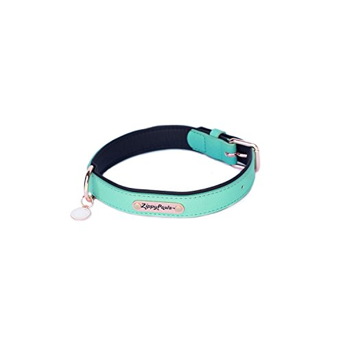 ZippyPaws Leather Collar - Teal L
