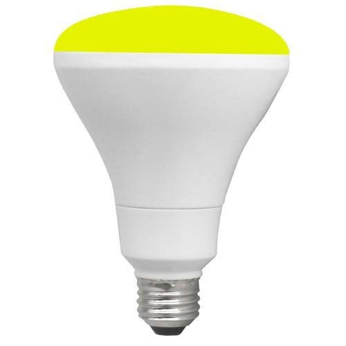 Brightest Outdoor Light Bulb - 9