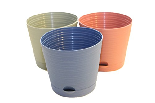 (3 Pack Self-Watering Round Planter Pots - 6.25 inch with Spouted Saucer)