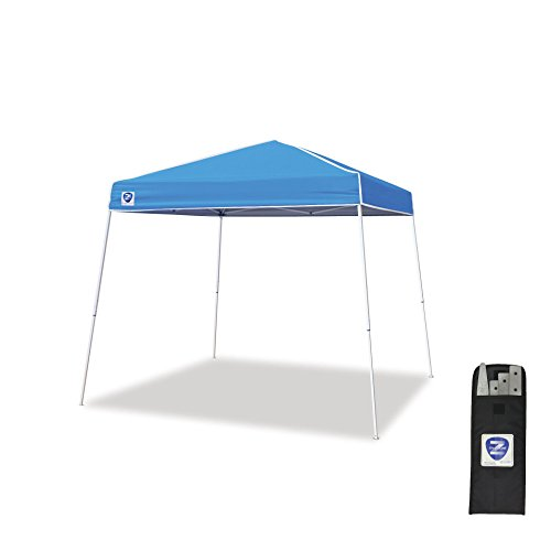 Z Shade 10 x 10 Foot Instant Canopy Tent Portable Shelter w/Steel Stake Kit by
