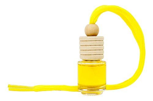 🥇 Paradise PER80165 Perfumador Botella