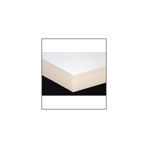 Pack of 10 Bockingford 425gsm EXTRA ROUGH 1/4 Imperial Sheets The Society for All Artists