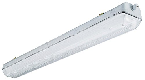Bestselling Fluorescent Lamps