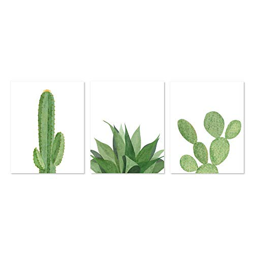 Modern Succulents & Cactus Home Decor Art Prints (Set of 3, 11x14)