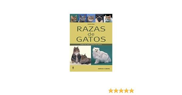 Razas de gatos: Amazon.es: Metz, Gabriele: Libros