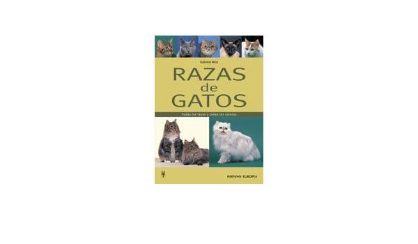 Razas de gatos / Cat Breeds: Todas las razas y todos los colores / All Breeds and All Colors (Spanish Edition): Gabriele Metz: 9788425516849: Amazon.com: ...