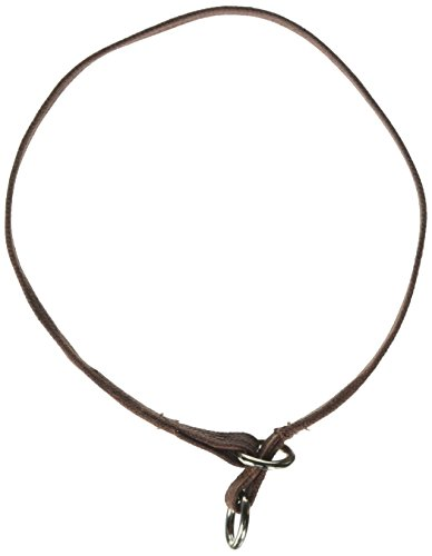 Resco Professional Dog Choke Collar, 3/8-Inch Wide x 18 Inches Long, Tan