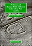 Prehistoric and Romano-British Settlement in the Solway Plain, Cumbria, Bewley, Robert H., 0946897662
