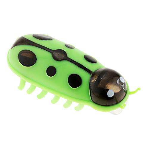 Agordo Beetle Cute Funny Ladybug Ladybird Cat Toys with Safety PVC Material (Color - Green)